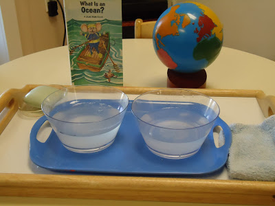 Montessori Inspired Kids Bible Activities - Saltwater v Freshwater Experiment (To The Lesson)
