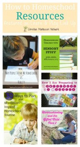 How to Homeschool Resources {Learn & Play Link Up #5}
