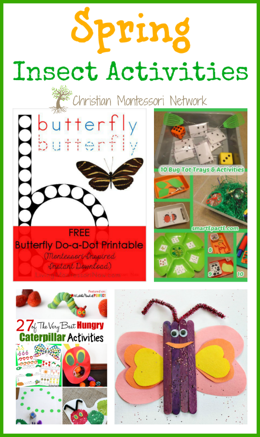 Spring Insect Activities - www.christianmontessorinetwork.com