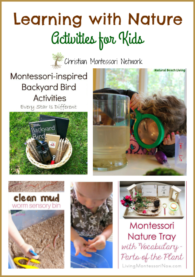 Learning with Nature - www.christianmontessorinetwork.com
