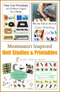 Montessori Inspired Unit Studies and Printables {Learn & Play Link Up}