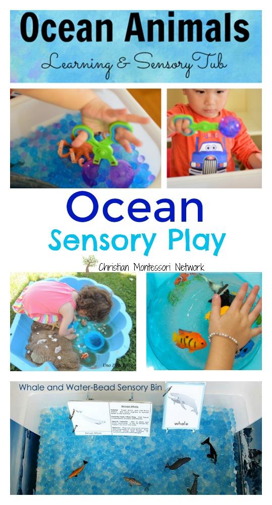 Ocean Sensory Play - www.christianmontessorinetwork.com